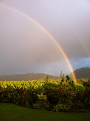 Kauai Real Estate Rainbow