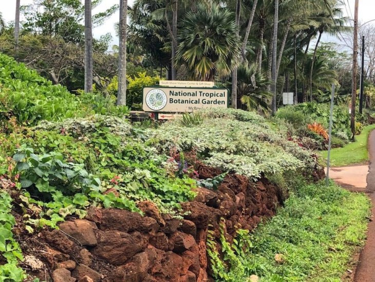 South Side Visitors Center- Kauai With Keiki- Things to do- South Side