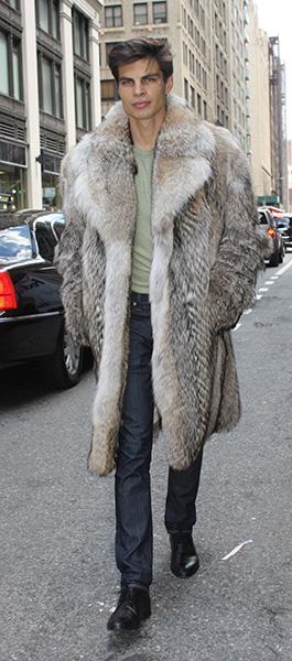 Coyote Fur Coat >> Men S Coyote Stroller Fur 88332 Marc Kaufman Furs