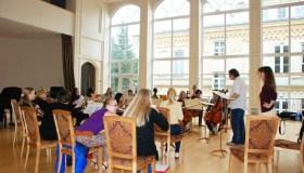 VDU kamerinis orkestras