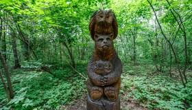 Skulptūros Kamšos draustinyje