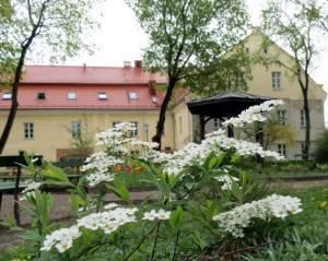 Vasaros skaitykla poeto namų sodelyje