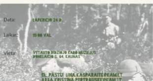 VDKM minės kariuomenės dieną!