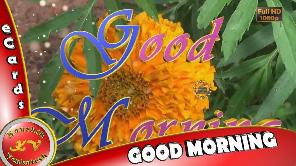 """Greetings to Wish every Morning a very """"Good Morning""""."""