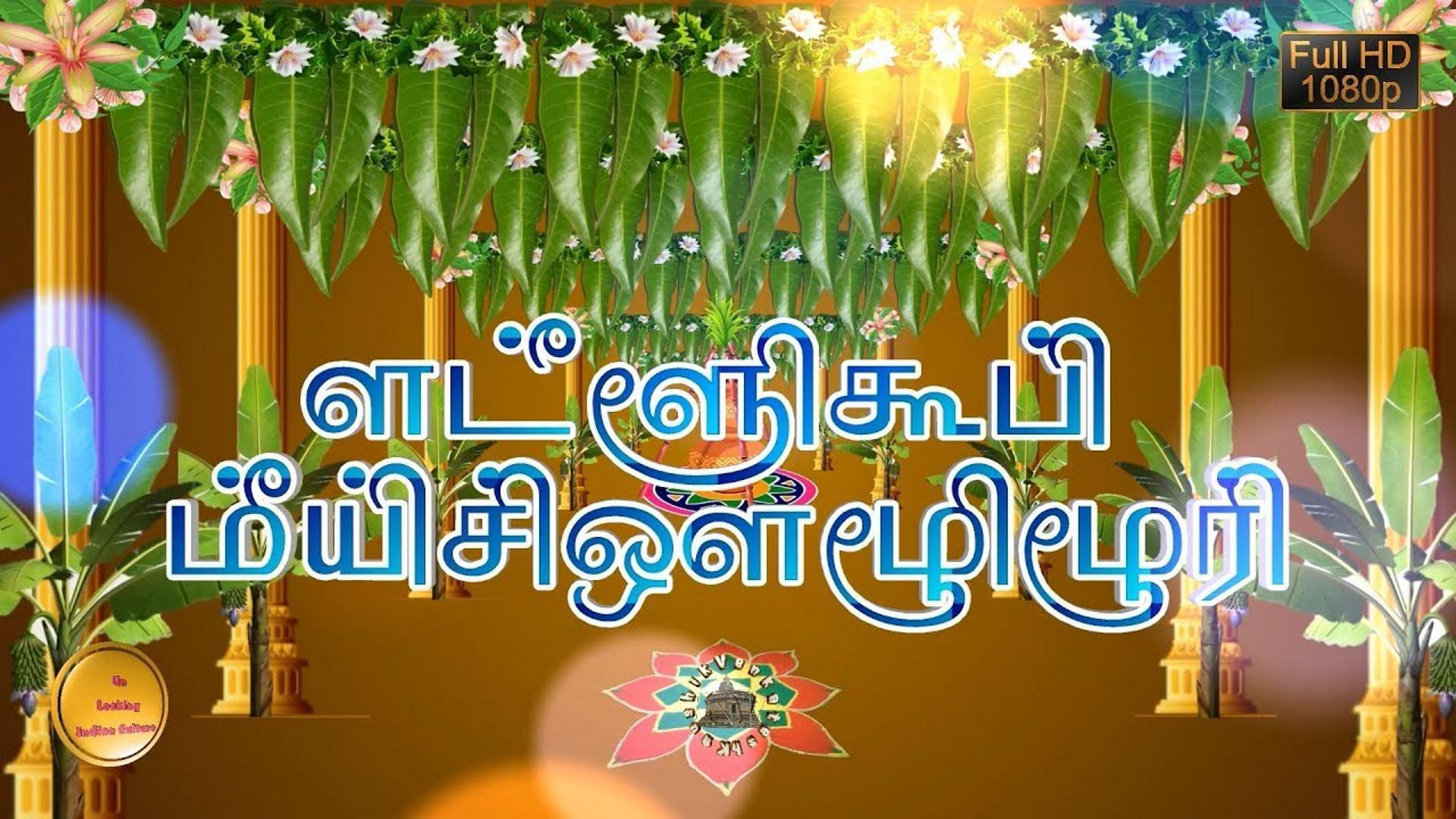Greetings Image for the harvest festival of Tamil Nadu held on 14 January.