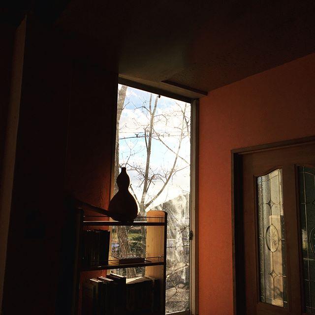 今日は月イチの竹原でウクレレレッスン。太陽が眩しくて、空がとても綺麗じゃた。ただ、寒いわー。ほんま、寒いわー。帰りに柿をいただいた。家の木になっとったやつで、そのまま食べられるやつなんと。やったー。#唄うたいカワムラ#ウクレレレッスン #竹原 #紬