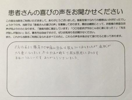 平井美登里アンケート