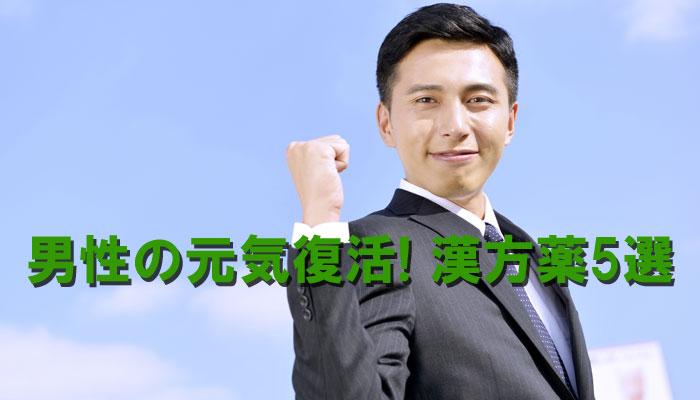 男性の元気復活の漢方イメージ画像