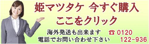 姫マツタケを今すぐ購入バナー