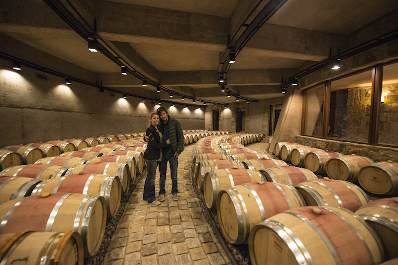 Os melhores vinhos de Mendoza