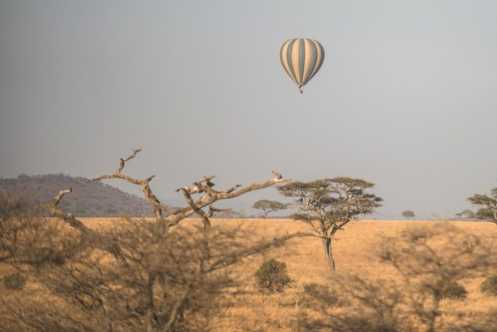 Safari de balão