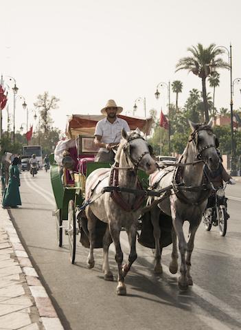 Como se locomover por Marrakech