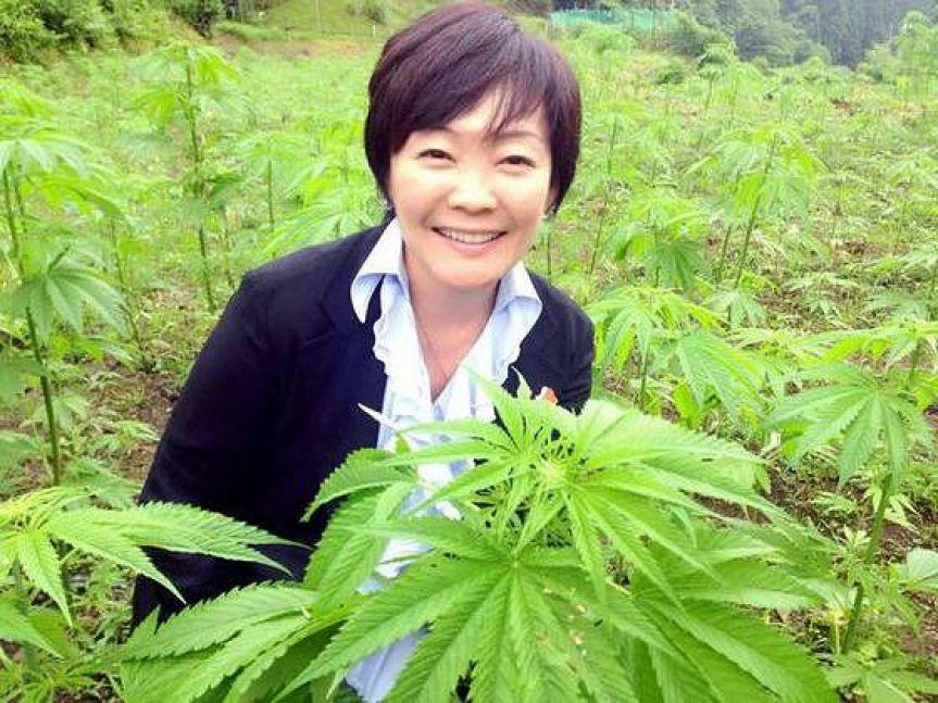 「昭恵 大麻」の画像検索結果