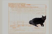 暦年贈与でも相続税の計算に持ち戻される  生前贈与加算