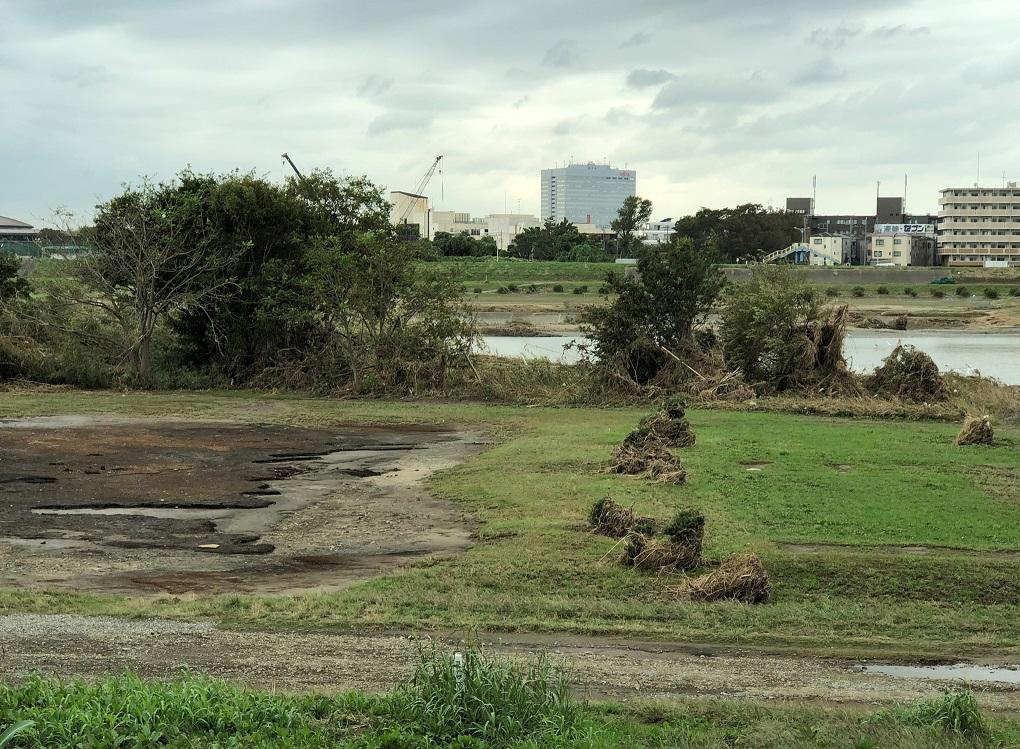 償却資産税についても台風被害による減免が行われる場合がある