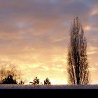 Sunset in Rouen