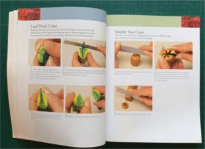 Nanetta Bananto's polymer clay book includes flower and leaf canes