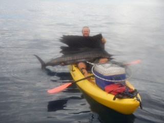 65lb Sailfish - Ask Pablo about this one!
