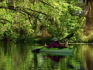 Kayak Silver Springs