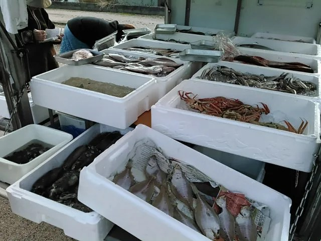 鮮魚の移動販売