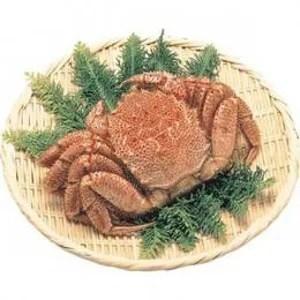 北海道産毛がに 約500g×2尾