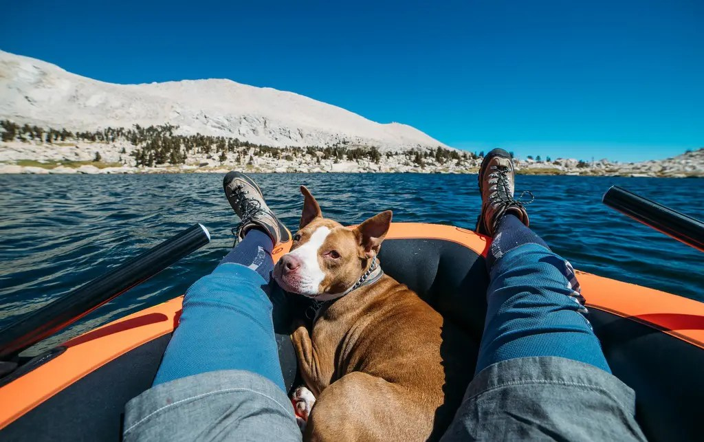 best dog kayaks