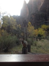 Having lunch in Zion Nat'l Park