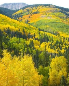 colorado in Fall