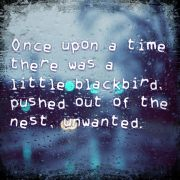 Once upon a time, there was a little blackbird pushed out of the nest, unwanted.