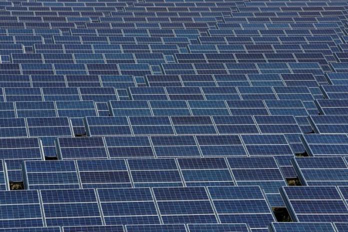 Quercus-Solar-panels
