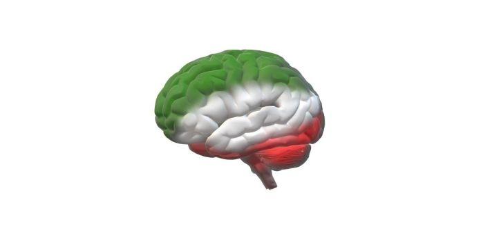 Brain Iran