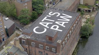 CAT'S PAW (2021). Aerial view, Chisenhale Gallery, London, 2021. Commissioned and produced by Chisenhale Gallery, London with support from Concrete Projects. Courtesy of the artist. Photo: Ali Sadeghian