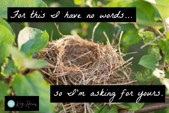 Empty Nest Photo, asking for advice
