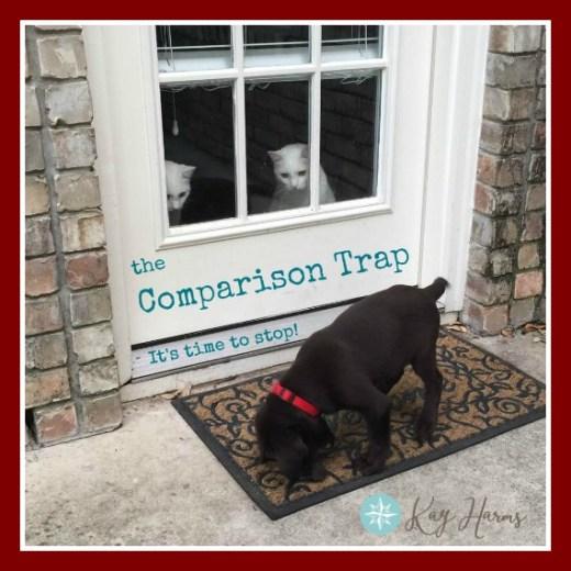 The Comparison Trap - graphic