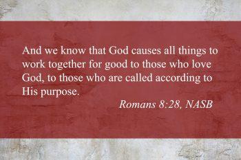 Romans 8:28 Image