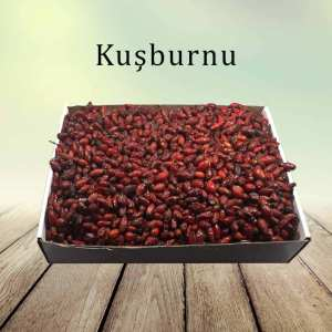 kusburnu-kuru-meyve-dogal-organik