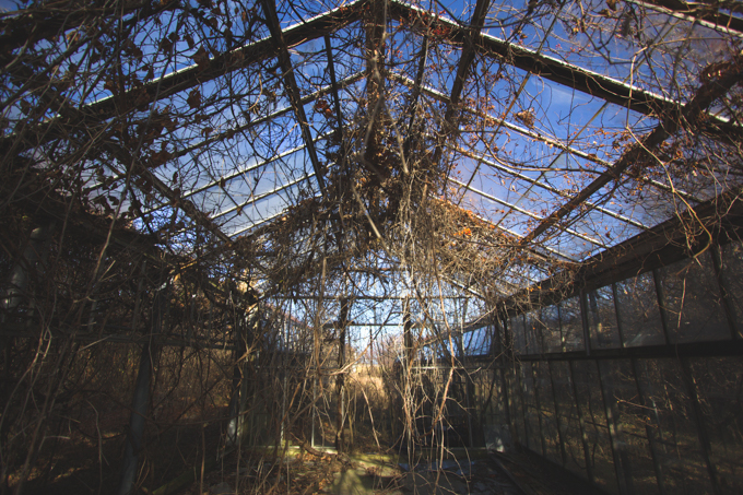 Ohio, Abandoned, Greenhouse