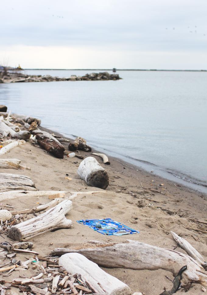 lake erie, beach trash, trash