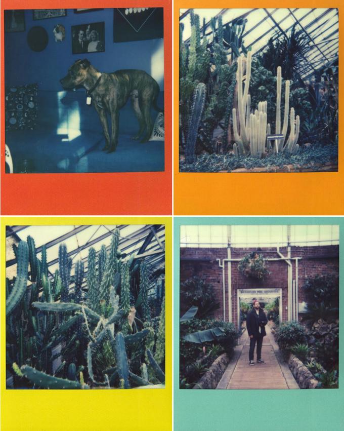 polaroid, instant film, film, polaroid 600