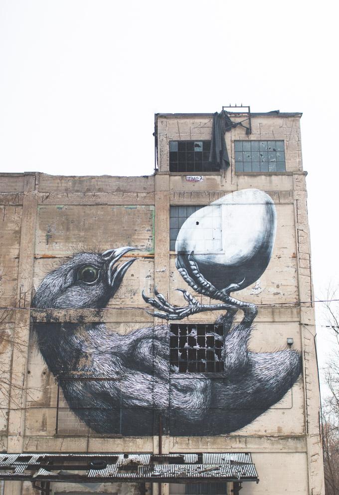 graffiti, roa rochester, ROA mural