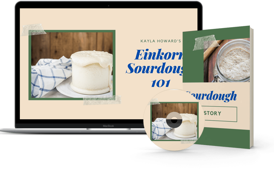 How to make Einkorn Sourdough without Having an Epic Failure
