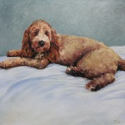Animal Portraits - Dog Portrait In Oil - Commission of a Spoodle portrait