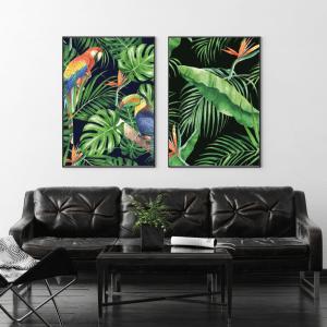 Exotic Bird Prints