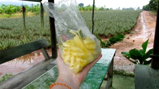 Bag of Pineapple (sold throughout Thailand)