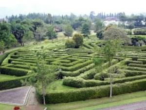 maze tamanbunganusantara 300x225 - Maze | Mainan Seru Dengan Sejarah yang Panjang
