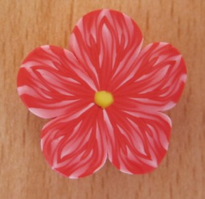 red and white ugly flower cane