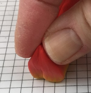 pinching top of polymer clay petal cane into a point
