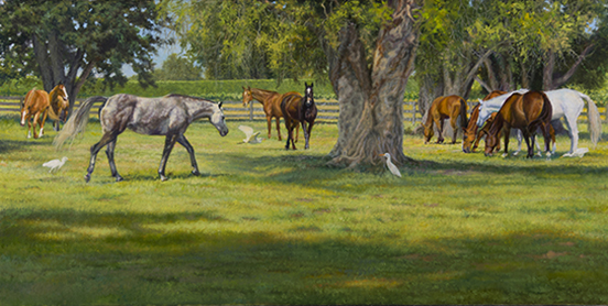 """Lazy Day in Wellington""© Kay Witherspoon, 14"" x 28"" oil on linen - Available"