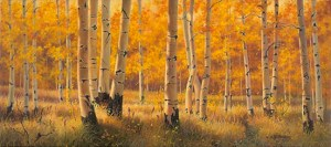 """""""Independence Pass"""" 