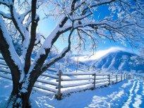 zimski praznici